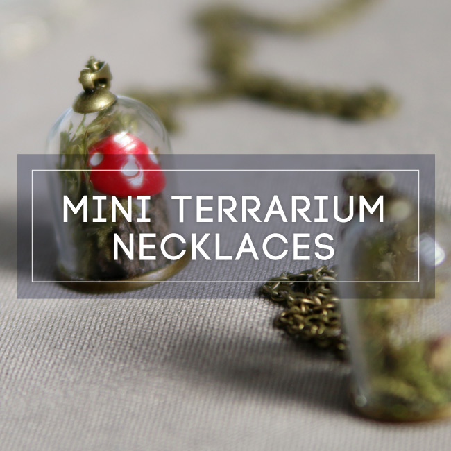 Terrarium Necklaces Workshop