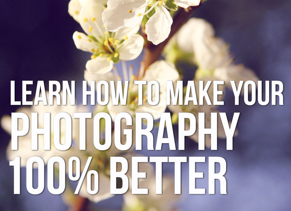 The ONE thing you need to learn to make your photography 100% better