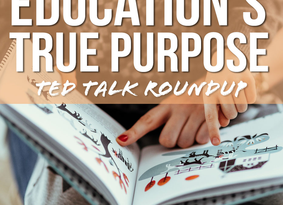 Education's true purpose and how it should prepare us for the real world